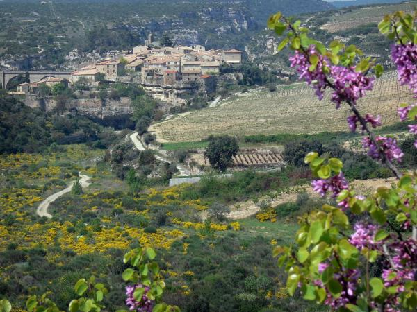 Minerve - Tourism, holidays & weekends guide in the Hérault