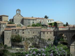 Minerve - Church and houses of the village, bridge, blooming shrub, in the Upper Languedoc Regional Nature Park