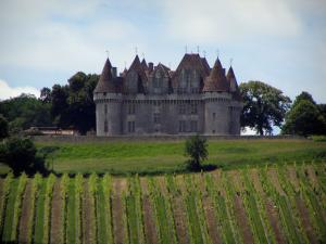 Monbazillac castle - Castle, trees and vines (Bergerac vineyards)