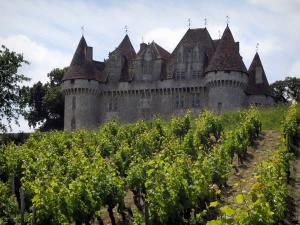 Monbazillac castle - Castle and vines (Bergerac vineyards)