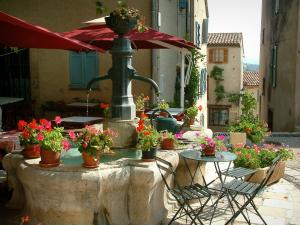 Mons - Fountain decorated with flowerpots, chairs, and table in foreground, café terrace and houses of the village