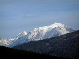 Mont-Blanc - From the Col des Aravis pass, view of a spruce forest and the Mont Blanc mountain range