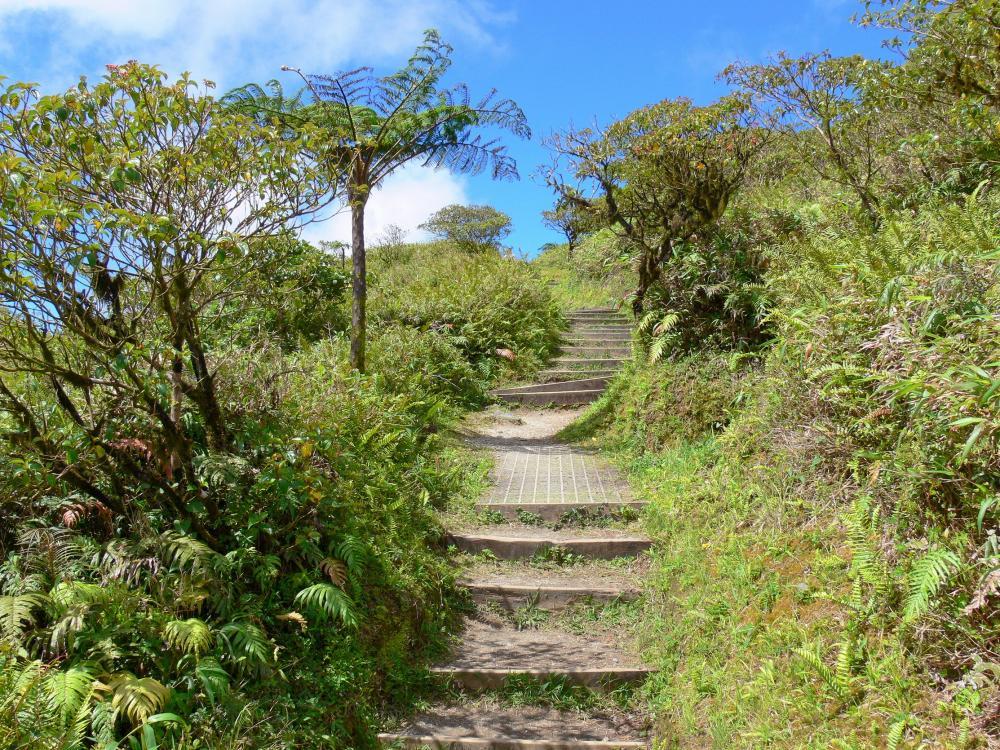 Photos La Montagne Pel 233 E Guide Tourisme Amp Vacances