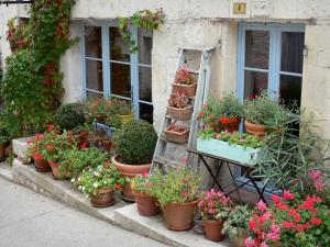 Montaigu-de-Quercy - Flower-bedecked facade of a houses
