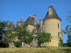Montal castle - Castle and trees, in the Quercy