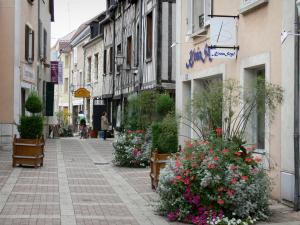 Montargis - Pedestrian street decorated with flowers and lined with houses and shops