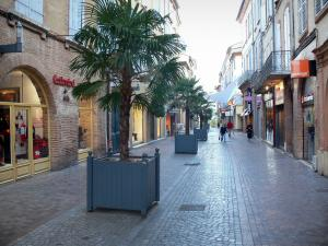 Montauban - Rue de la Resistance street with its shops, its facades, and its palm trees in pots