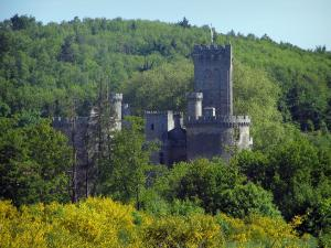Montbrun castle - Keep and towers of the fortress, trees and blooming brooms, in the Périgord-Limousin Regional Nature Park