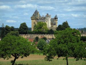 Montfort castle - Castle, houses of the village, trees and cloudy sky, in the Dordogne valley, in Périgord