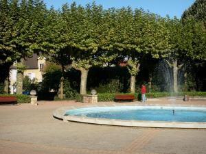 Montluçon - Circular pool and plane trees in the Wilson garden