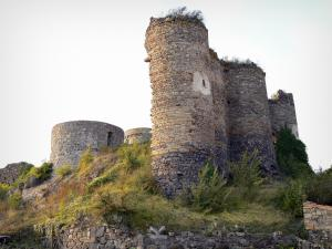 Montmorin castle - Remains of the fortress