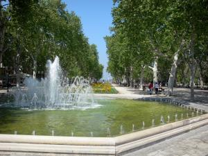 Montpellier - Fountain, line of plane trees and flowerbeds of the Charles-de-Gaulle esplanade