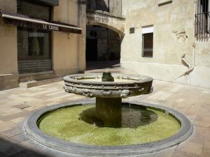 Montpellier - Fountain of the Saint-Ravy square and houses of the old town