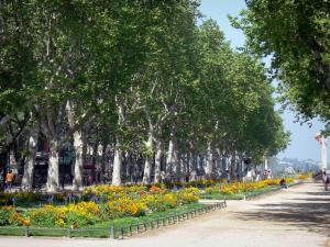 Montpellier - Promenade, flowerbeds and plane trees of the Charles-de-Gaulle esplanade