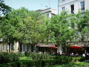 Montpellier - Canourgue square: rosebush flowerbed, trees, café terrace and buildings