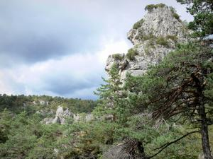 Montpellier-le-Vieux blockfield - Dolomitic rocks and trees with a stormy sky
