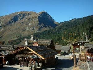 Montriond - Wooden chalets of the village (ski resort), forest and mountain in Haut-Chablais