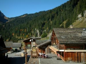 Montriond - Wooden chalets of the village (ski resort), café terrace and forest in Haut-Chablais