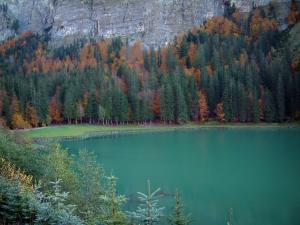 Montriond lake - Trees and spruces in foreground, emerald-colored lake, forest in autumn and cliff in Haut-Chablais