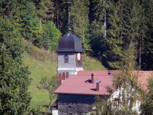 Monts Jura resort - Winter and summer sports resort (ski resort): Mijoux village: church steeple, house and trees; in Upper Jura Regional Nature Park (Jura mountain range)