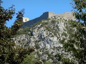 Montségur castle - Cathar fortress (remains, ruins) and its rocky outcrop (pog); trees in the foreground
