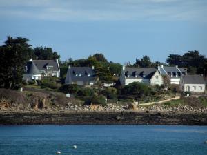 Morbihan Gulf   Trees And Houses Looking Onto The Sea