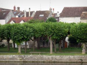 Moret-sur-Loing - River Loing, bank planted with trees and decorated with benches, roofs of houses of the medieval town