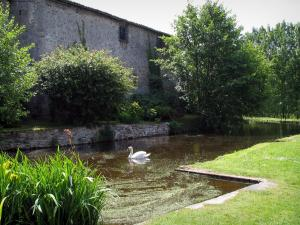Mortemart - Castle of the Dukes, moats with a swan, plants and trees