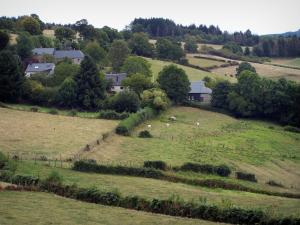 Morvan - Morvan Regional Nature Park: meadows, trees and houses