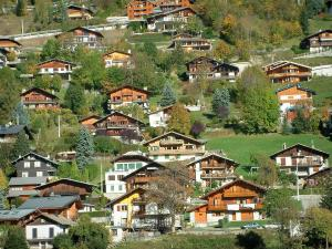 Morzine - Trees and chalets of the village (winter and summer sports resort), in Haut-Chablais