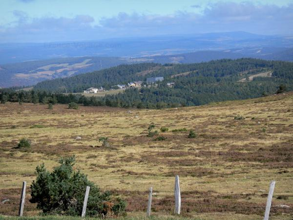 Mount Lozère - Cévennes National Park: view on the slopes of Mount Lozère covered by moors, and surrounding landscape