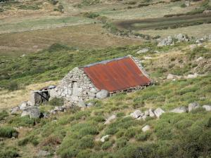 Mount Lozère - Cévennes National Park: stone hut surrounded by moors and pastureland