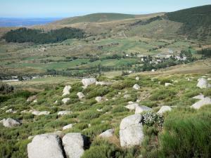 Mount Lozère - Cévennes National Park: view on the slopes of the granite mountains
