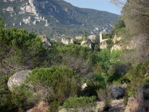 Mourèze rock formations - Dolomite rock formations: shrubs, trees and cliffs