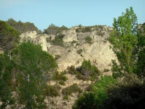 Mourèze rock formations - Dolomite rock formations: cliffs, shrubs and trees