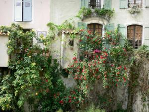 Moustiers-Sainte-Marie - Houses with roses (rosebushes)