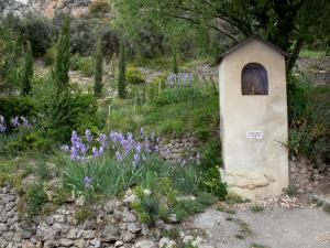 Moustiers-Sainte-Marie - Oratory, iris, low stone walls and trees