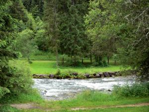 Mouthe valley - The River Doubs, banks and trees; in the Upper Jura Regional Nature Park