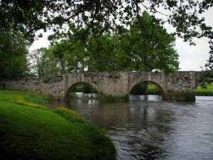 Moutier-d'Ahun - Bridge spanning the River Creuse, bank, wild flowers and trees
