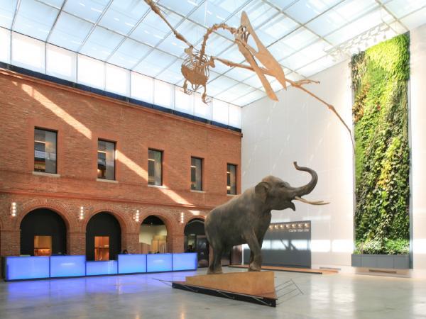 Le mus um de toulouse guide tourisme vacances - Les jardins du museum toulouse ...
