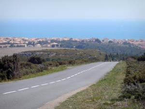 Narbonne-Plage - Road lined with vegetation overlooking the resort and the Mediterranean sea