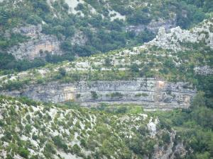 Navacelles cirque - Limestone cliffs and natural vegetation of the cirque