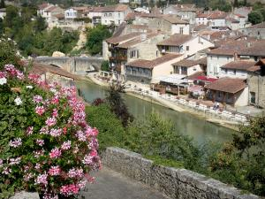 Nérac - Geranium flowers in foreground with a view of the Baïse river and the houses of the old Nérac medieval town