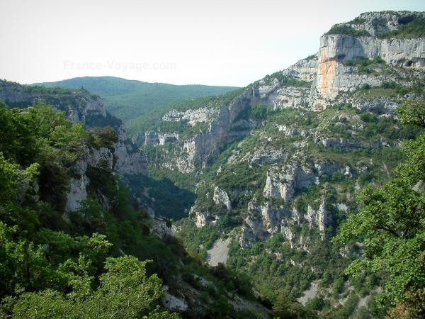 Nesque gorges - Wild canyon with cliffs, rock faces, trees and forests