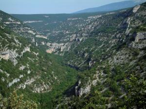 Nesque gorges - Wild canyon with rock faces, trees and forests