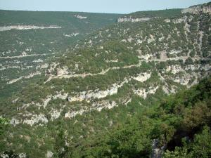 Nesque gorges - Wild canyon with rock faces and trees