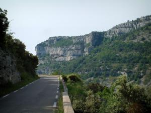 Nesque gorges - Canyon road, the steep cliffs (rock faces) and trees