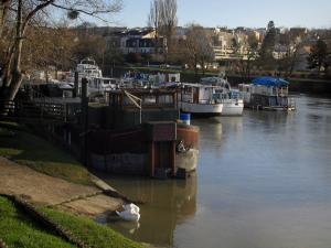 Neuilly-sur-Marne - The River Marne with barges (boats), swans, banks, trees and houses in background