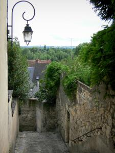 Nevers - Stairway, wall lantern, walls, wisteria and roofs of houses