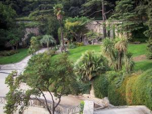 Nîmes - Fontaine garden (park): trees, shrubs, palms, alleys and lawns